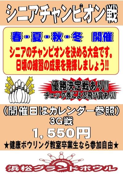 シニアチャンピオン戦.jpg
